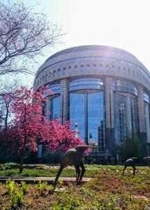 European Parliament, Brussels, Parc Leopold, sculpture, ostrich, Belgium, European Quarter