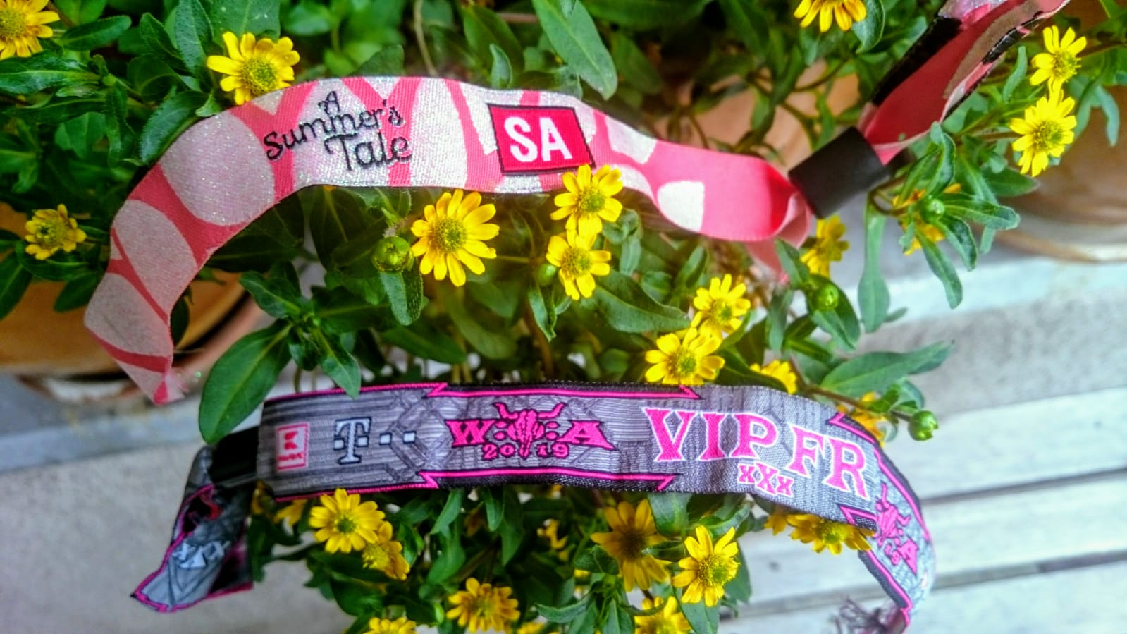 Festival, Open Air, festiva ribbons, Flowers, Biggy Pop, Blog, Wacken, A Summer's Tale, Northgermany, music, pop, Hamburg