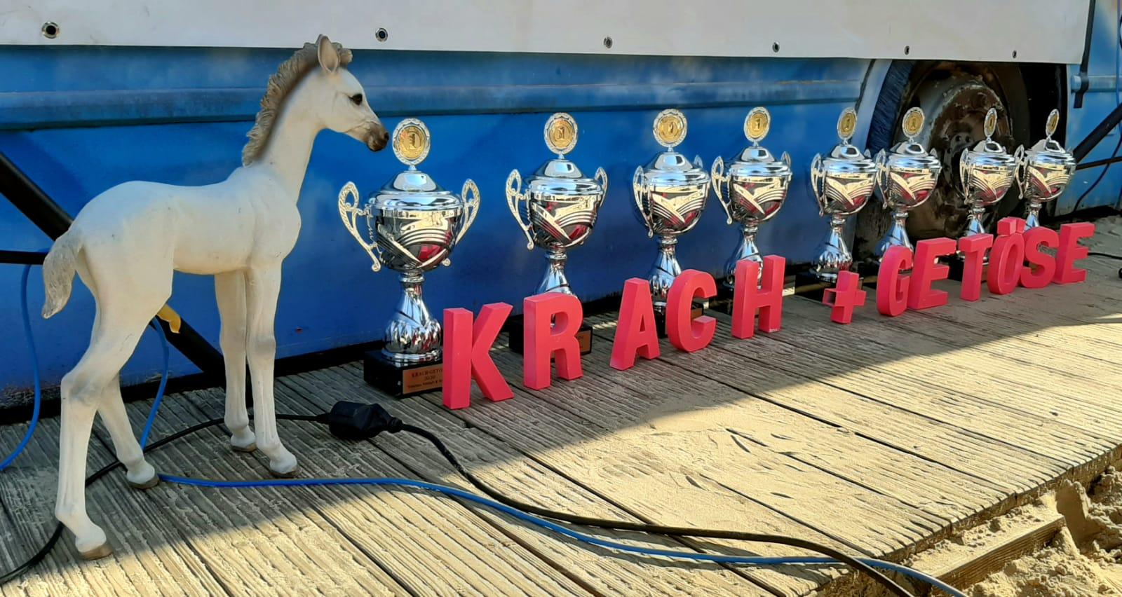 Krach+Getöse, Newcomer, Award, Preisverleihung, Pokale, Pferd